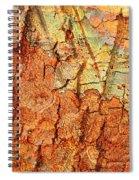 Rusty Bark Abstract Spiral Notebook