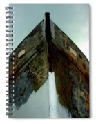 Rusty Bow Spiral Notebook