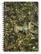 Rusty Crayfish At Night Spiral Notebook