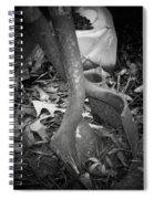 Rusty Embrace Spiral Notebook
