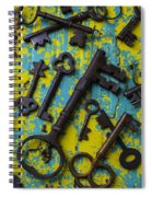 Rusty Keys Spiral Notebook