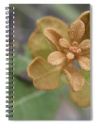 Rusty Lyonia Spiral Notebook