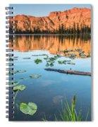 Ruth Lake Lilies Spiral Notebook