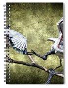 Sacred Ibis Photobombing Spiral Notebook