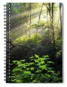 Sacred Light Spiral Notebook