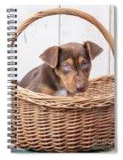 Sad Puppy Spiral Notebook