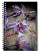 Saffron Flower Spiral Notebook
