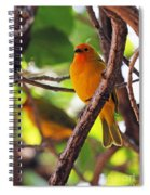 Saffron Pair Spiral Notebook
