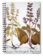 Sage, 1613 Spiral Notebook