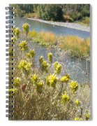Sage Along The River Spiral Notebook