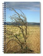 Sage Brush And Tumble Weed Spiral Notebook
