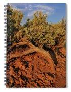 Sagebrush At Sunset Spiral Notebook