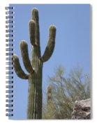 Saguaro 6 Spiral Notebook