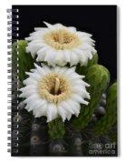 Saguaro Blooms II Spiral Notebook