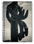 Saguaro Cactus Armed And Twisted Spiral Notebook