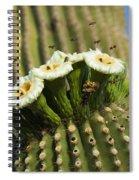Saguaro Cactus Flower 8 Spiral Notebook