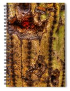 Saguaro Detail No. 18 Spiral Notebook