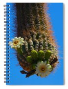 Saguaro Elephant Trunk Spiral Notebook