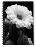 Saguaro First Bloom Spiral Notebook