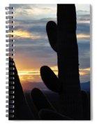 Saguaro National Park Sunset Landscape Spiral Notebook
