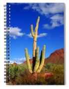 Saguaro Np Spiral Notebook