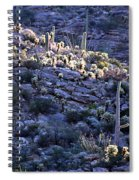 Saguaro Sunrise Spiral Notebook