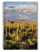 Saguaronatlparkeveninglight Spiral Notebook