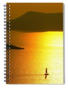 Sailing On Gold 1 Spiral Notebook