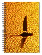 Sailing On Gold Spiral Notebook