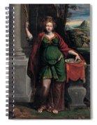 Saint Lucy Spiral Notebook