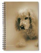 Saint Shaggy Art 6 Spiral Notebook