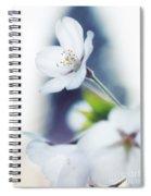 Sakura Cherry Blossom Flowers Spiral Notebook