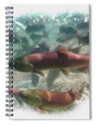 Salmon Migration Spiral Notebook