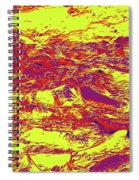 Salmon Run 6 Spiral Notebook