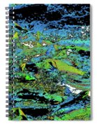 Salmon Run 7 Spiral Notebook