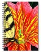 Salpliglossis Spiral Notebook