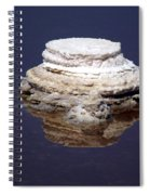 salt cristal at the Dead Sea Israel  Spiral Notebook