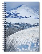 Salt Lake City Tabernacle In Snow Spiral Notebook
