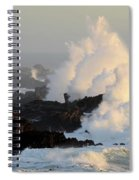 Salt Point Wave Spiral Notebook