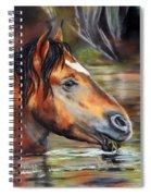 Salt River Tango Spiral Notebook