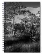 Salt Springs Spiral Notebook