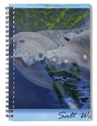 Salt Water Ballet - Manatees - 2 Spiral Notebook