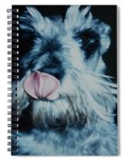 Sam The Fat Cow Spiral Notebook