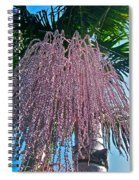 San Clemente Sunday Spiral Notebook