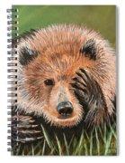 San Diego Bear Spiral Notebook