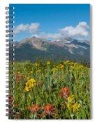 San Miguel Mountains Spiral Notebook