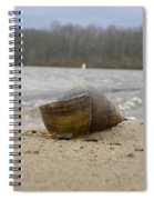 Sand And Shell Spiral Notebook