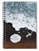 Sand Dollar Spiral Notebook