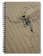 Sand Doodles Spiral Notebook