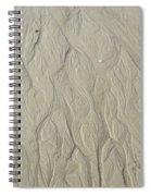 Sand Fire 3 Spiral Notebook